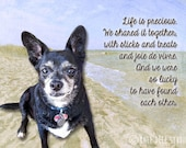 Custom Pet Memorial Reserved Dog Photograph Special Words Remembrance Gift for Pet Owner at Pet's Death Custom Photographic Collage 8x10