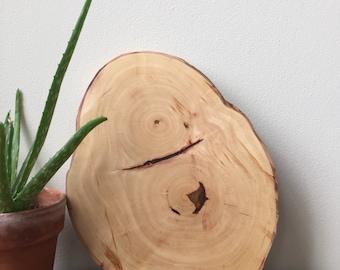 Pine Wood Slice