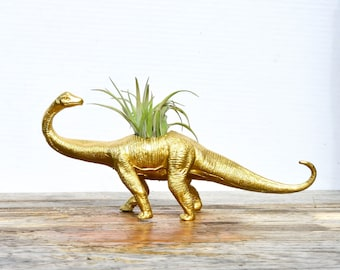 Any Color Large Plantasaurus / Brontosaurus Long Neck Dinosaur Planter with Air Plant, Air Plant Holder, Great Gifts, Low Shipping!