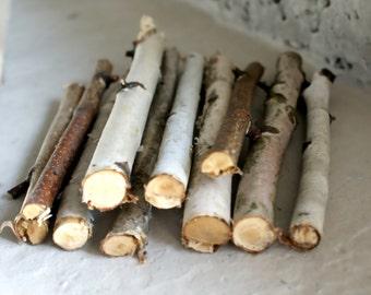 15 Birch sticks, Birch Log, White Birch Branches. Decorative Birch Wood Birch Wood Logs. Birch sticks for handmade