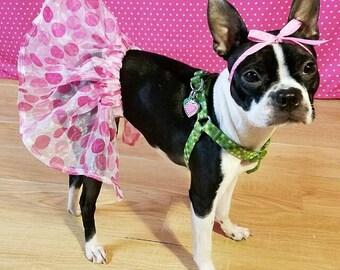 Pink Polka Dot Chiffon Dog Tutu