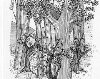 Wall art, tree picture, black and white art, art print, Woodland scene, forest illustration, trees, Interior decor, Tolkien, line drawin