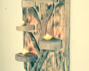 tree of life roasted / Driftwood
