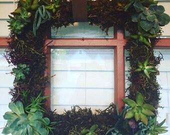 Square Living Succulent Wreath