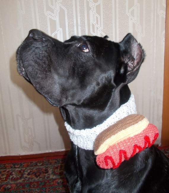 Crochet Collar With Existing Dog Collar