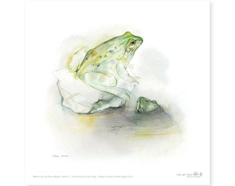 Frog fine art print, watercolor, 8,3 x 8,3 inch, limited edition, painted by Klaus Meyer-Gasters