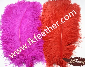 "22"" - 24"" Ostrich Feather"
