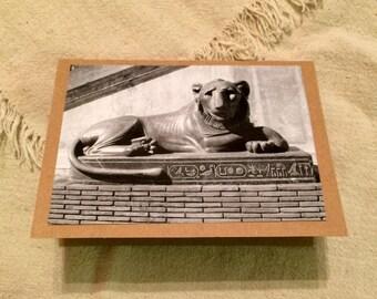 Kitten of Egypt - Blank Greeting Card