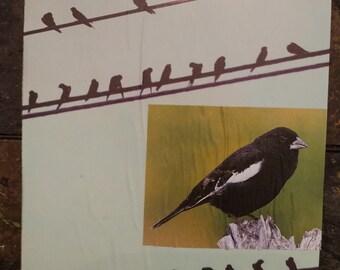Blackbirds Plaque