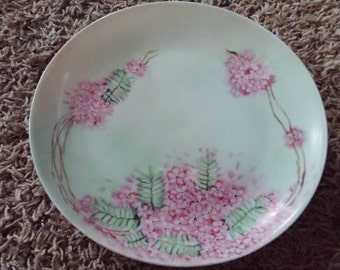 Vintage Hutschenreuther Selb China Plate Green Pink Bavaria