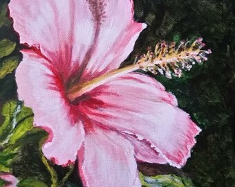Pink hibiscus  #87