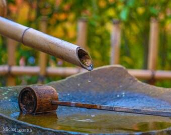 Water Drop Photo, Zen Garden, Dripping Water Art, Japanese Garden Photo, Calm Image, Tranquility Wall Decor, Water Droplet, Photo For Clinic