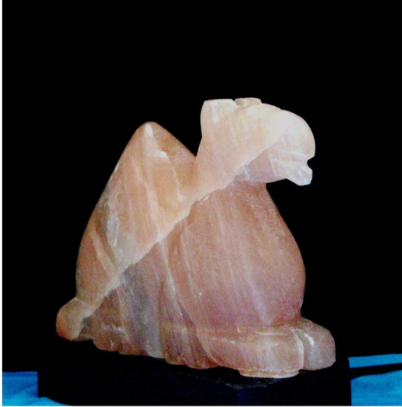 Himalayan Salt Lamps Dangerous : Carved Camel Himalayan Salt Lamp 1213