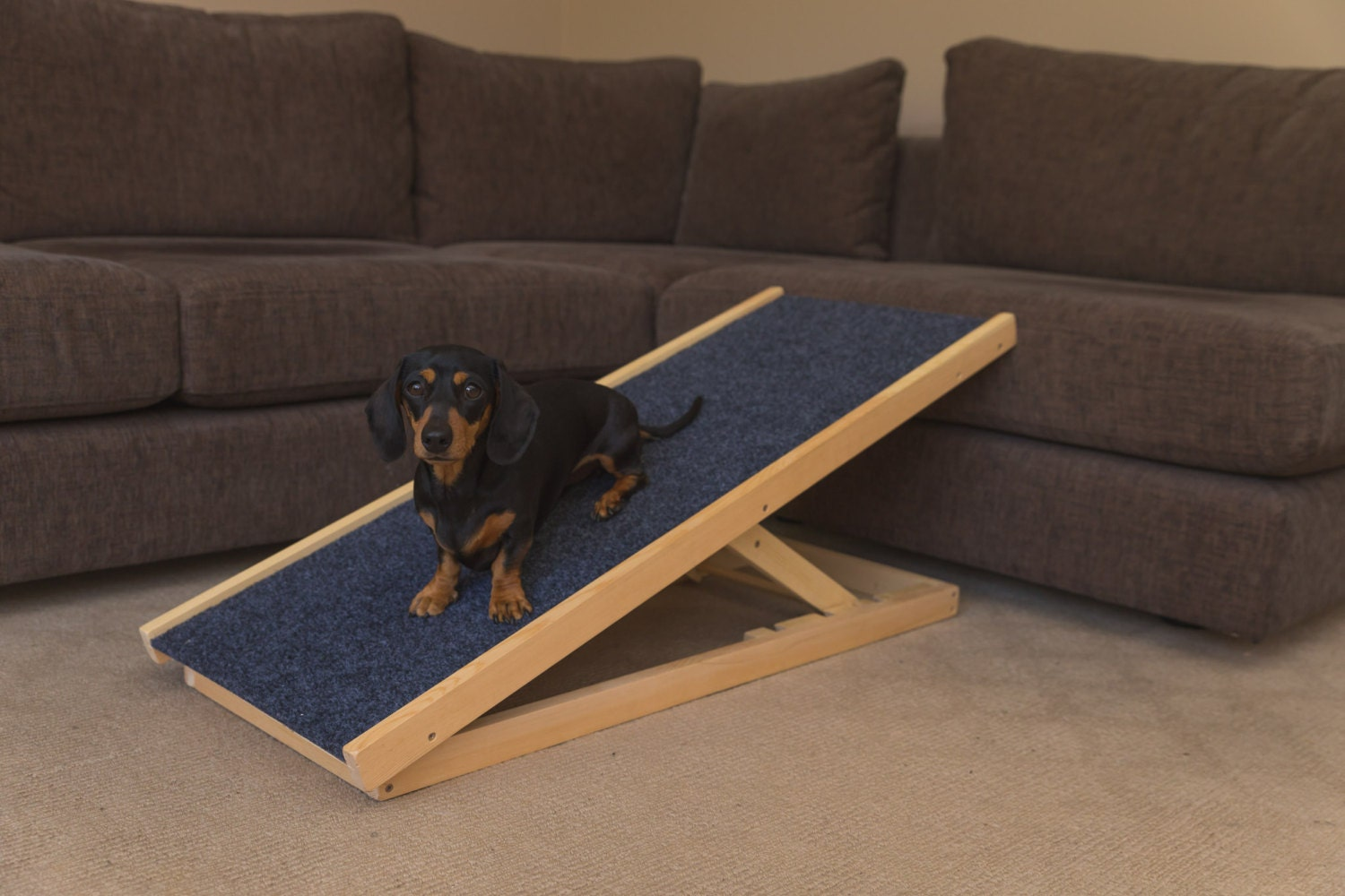 Dog Ramp Pet Ramp Portable Dog Ramp With Adjustable