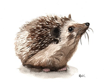 A5 Hedgehog Watercolour Print - Original Handmade Art Print