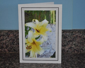 Double Framed Card - Yellow & White Lily