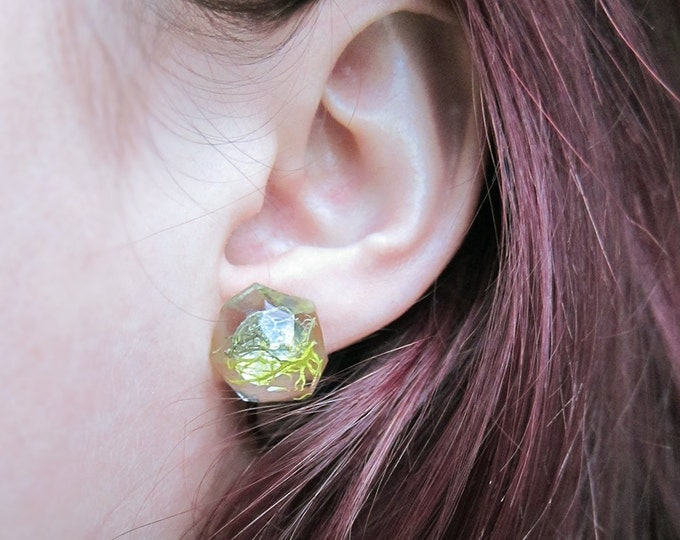 Featured listing image: Geometric Terrarium Moss Resin Earrings