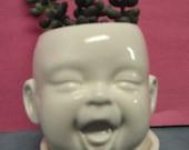 Happy Little Baby planter
