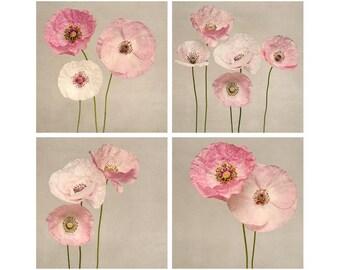Wall Art Print Set, Poppy Flower Art, Wall Art Set, Flower Photography, Floral Wall Art, Set of 4 Prints