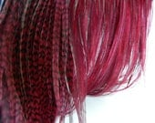 """10 BURGUNDY Grizzly & Solid Feather Hair Extensions, SKINNY Hair Feather Extensions, 8"""" to 10"""" Long"""