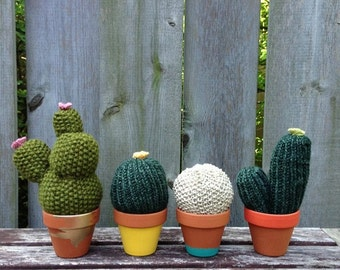 Hand Knit Cactus in a Painted Terra Cotta Clay Pot, Various Sizes