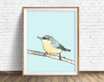 Pygmy Nuthatch - bird, drawing, watercolor, bird print, blue, art print, wall art print, large wall art, animal art print, woodland wall art