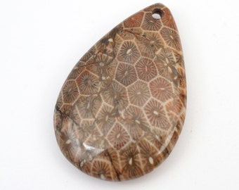 Teardrop fossil coral pendant. top drilled grey semiprecious stone bead, 42mm