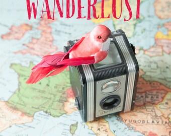 Wanderlust - bird vintage map camera typography photo, world map, pastel, red bird, wanderlust, travel, whimsical, vintage camera
