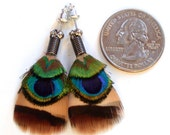 Small Peacock Eye Feather Earrings with Posts- All Natural Colors- Ready to Ship