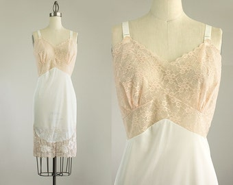 Cherie Vintage 60s Vintage Blush Champagne And Ivory Embroidered Lace Slip Dress / Medium