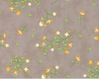 Sundrops (29011 24) Blossoms Taupe by Corey Yoder