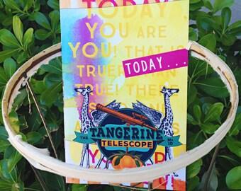 No. 10 The Tangerine Telescope