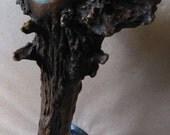 Custom Elk Antler/ Turquoise  Beer Tap Handle on Etsy- Deer - Moose - Kegerator - Man Cave