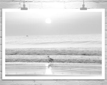 Beach Art, Rhode Island Art, Black and White, Beach Photography, Ocean Photography, Atlantic Ocean, Sunrises, Sunsets, Fine Art Photograph