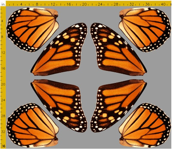 Orange Monarch Butterfly Wings Fabric for making Costume Fairy
