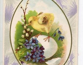Easter vintage postcard, Easter Greeting  Vintage Postcard, chick on egg, violets vintage postcard, SharonFosterVintage