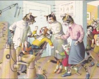 Mainzer cats  postcard Kitten visits the dentist, Mainzer dressed cats,  Postcard no. 4872 vintage postcard, SharonFosterVintage