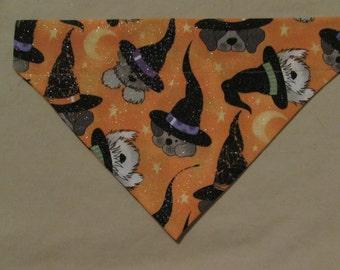 Halloween dogs - Dog bandanas