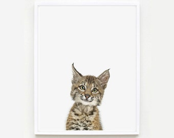 Baby Animal Nursery Art Print. Baby Bobcat Little Darling. Farm Animal Wall Art.  Animal Nursery Decor. Baby Animal Photo.