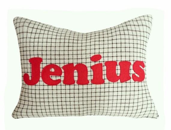 Word Pillow Cover, Funny Text Pillows, Jenius Genius Pillow, Guys Birthday Gift, Unique Gift Him, Man Cave Pillow, Boys Dorm Decor 14x18