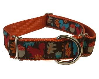 "1"" Squirrel Dog Martingale - Acorn Squirrels Dog Collar, Leash or Harness"