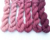 GRADIENT YARN Worsted Weight - Fuchsia Pink Set of 6 Mini Skeins