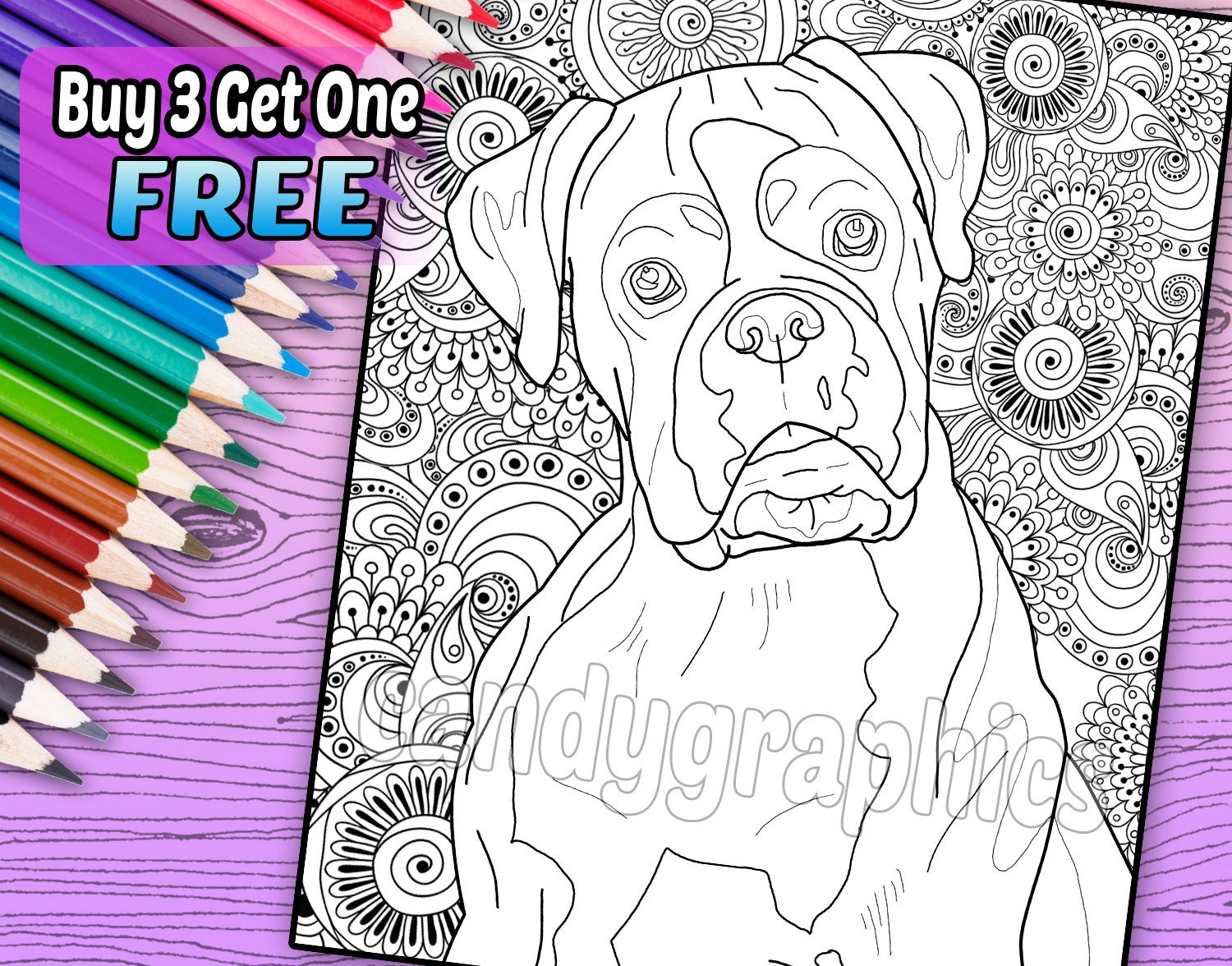 boxer coloring book page printable instant download