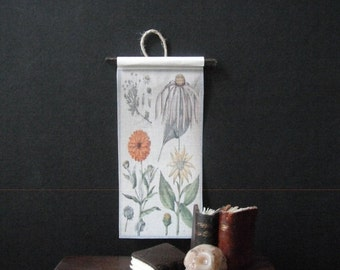 ON SALE Miniature Natural History Chart---Botany