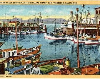 Vintage California Postcard - Fishing Fleet at Fisherman's Wharf, San Francisco (Unused)