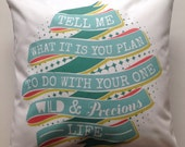 """quote pillow cover: """"tell me what you plan to do with your one wild and precious life."""""""