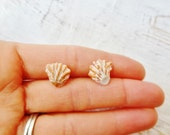 Cat's Paw Seashell Stud Surgical Steel Earrings B2