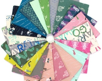 Raindrop Fat Quarter Bundle by Rashida Coleman Hale for Cotton + Steel - 20 prints