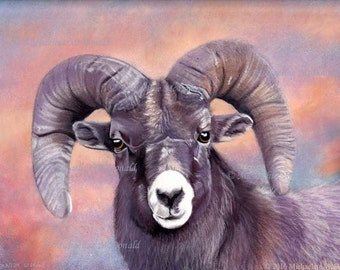 Regal Ram Original Painting by Michaeline McDonald - ram painting, big horn sheep painting, wildlife art, animals, Aries,