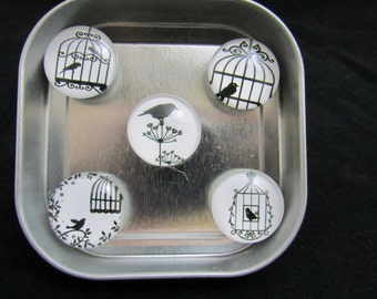 Bird magnets, strong magnets, white board magnets, neodymium magnets, black and white magnets, cute magnets, stocking stuffers 566